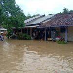 Meluas, Banjir di Karawang Menenggelamkan 15 Desa