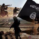 Gayus: Nasib WNI Eks ISIS Harus Diputus Pengadilan