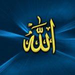 KISAH RASULULLAH (18) : Perlindungan Allah