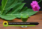 Khasiat Jus Daun Pepaya Sebagai Obat Herbal