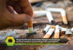 Mengerikan! Merokok Setelah Makan Ternyata Bisa 10 kali Lipat Berpotensi Sebabkan Impotensi Hingga kemandulan Bagi Pria