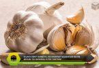 Manfaat Kesehatan Rutin Minum Teh Bawang Putih