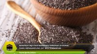 Manfaat Biji Chia Makanan Tersehat di Dunia Yang Mengandung Zat Besi Terbanyak