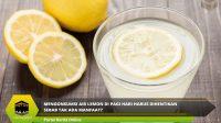 Mengonsumsi Air Lemon Di Pagi Hari Harus Dihentikan Sebab Tak Ada Manfaat?