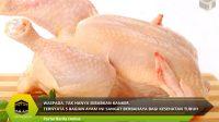 Ternyata 5 Bagian Ayam ini Sangat Berbahaya Bagi Kesehatan Tubuh