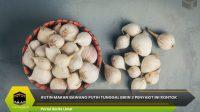 Rutin Makan Bawang Putih Tunggal Bikin 3 Penyakit Ini Rontok